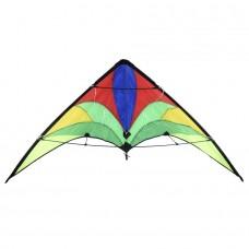 Повітряний змій SMJ Sport SKY BLOOM (140 x 74 cm)