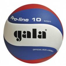 М'яч волейбольний GALA Pro-Line 10 BV5581S