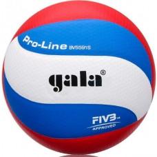 М'яч волейбольний GALA Pro-Line BV5591S