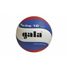 М'яч волейбольний GALA Pro-Line 10 BV5821S