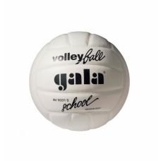 М'яч волейбольний GALA School Fоам BV5031L