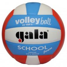 М'яч волейбольний GALA School BV5511S